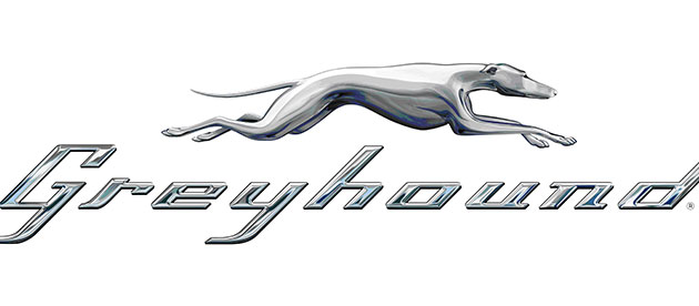 header_greyhound